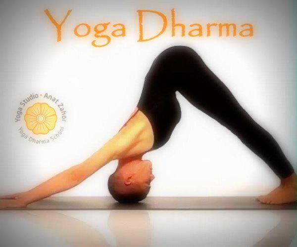 anat zahor yoga dharma yoga studio